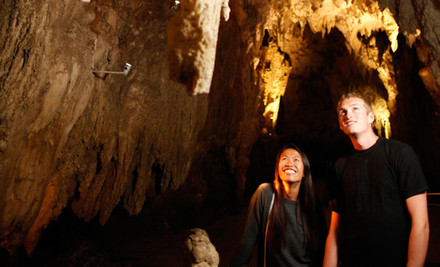 $113 for a Waitomo Glowworm Express Tour, Auckland to Auckland (value $229)