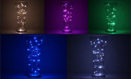 $8 for One Set of Decorative LED Wire Seed Lights or $35 for Five Sets
