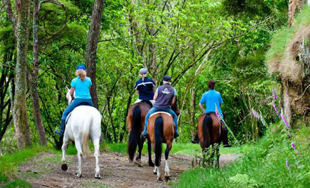 $45 for One 90-Minute 'The Outlands' Horse Trek or $89 for Two People (value $85)