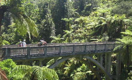 $89 for a 4.5-Hour Bridge To Nowhere Tour incl. a Two-Hour Jet Boat Ride, Guided Walk & Morning Tea - Whanganui (value $145)
