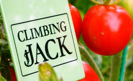 $80 for a Climbing Jack Growing Fence (value $149)