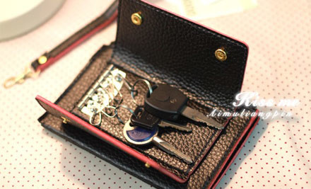 $15 for a Smart Phone & Key Satchel with Handle