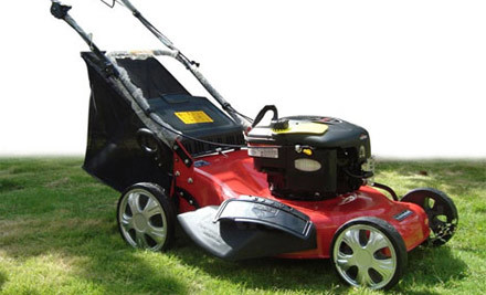 $679 for a Self-Propelled Lawnmower with Briggs & Stratton Engine (value $899)