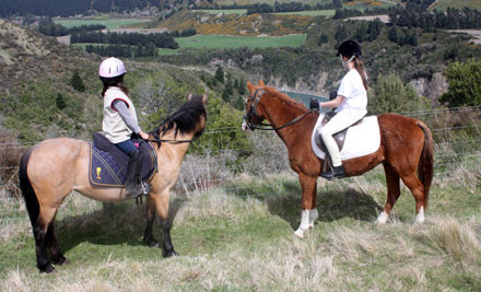 50% off a One Hour or 2.5 Hour Horse Trek (value up to $150)