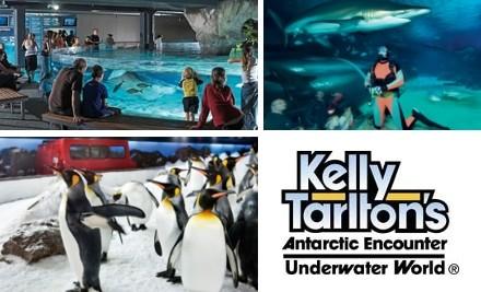 $38 Family Pass to Kelly Tarlton's Antarctic Encounter & Underwater World (Value $75.60)
