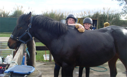 $59 for a Full Day School Holiday Activity incl. Horse Riding, Pony Grooming, Games, Swimming & Activities (value $95)