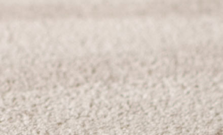 $99 for a Standard Three Bedroom Home Carpet Clean (value $185)