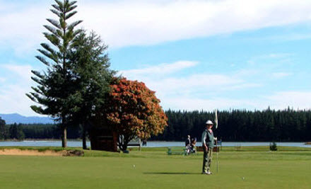 $21 for One Round or $76 for Four Rounds of Golf (value up to $192)