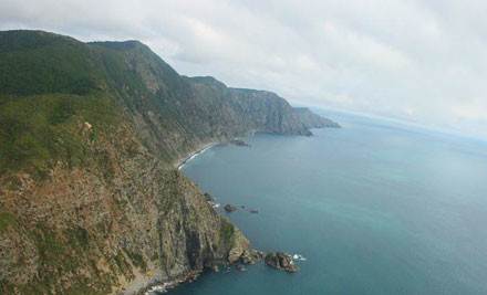 $345 for a Kapiti Island Experience Helicopter Flight for Three People (value $570)