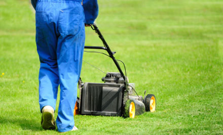 $35 for One Hour of Lawn-Mowing (value $60)