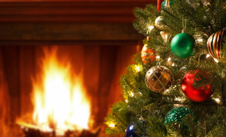 From $29 for a Freshly Cut Christmas Tree - Pick-up or Auckland Delivery Options (value up to $75)