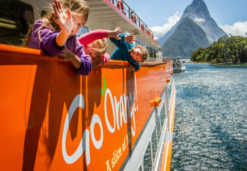 One Adult Ticket on the Milford Sound Cruise - Options for up to Four Adults & Family Pass