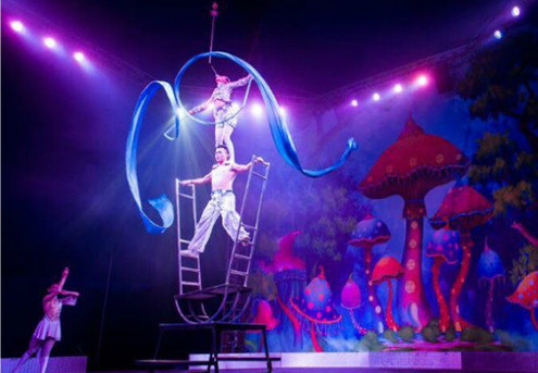 Adult Ticket to the Brand New 