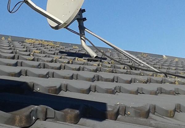 Accredited Roof Coatings Grabone Nz