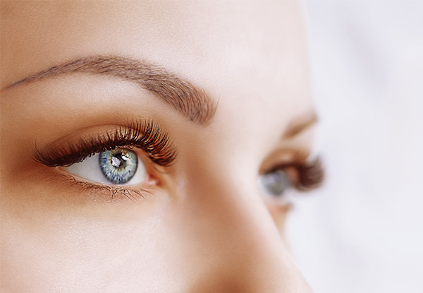 Eye Trio incl. Eyebrow Wax with Eyebrow & Eyelash Tint - Option for Upper Lip Wax, Underarm Wax or Both