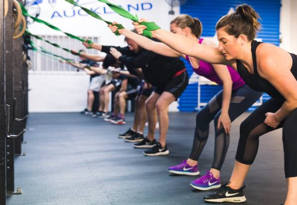 Four-Week Unlimited QuickFit 30-Minute Class Pass - Rosedale Location Only