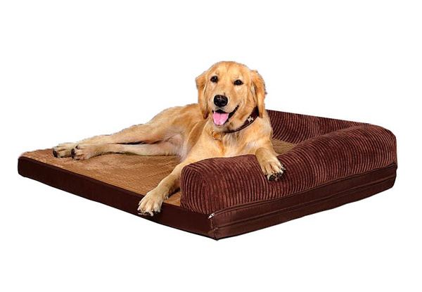 Pet Bed with Memory Foam - Three Sizes Available