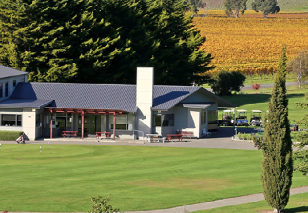 Escape to Marlborough Half-Day Wine Tour for One Person - Options for up to Six People & Full Day Tour