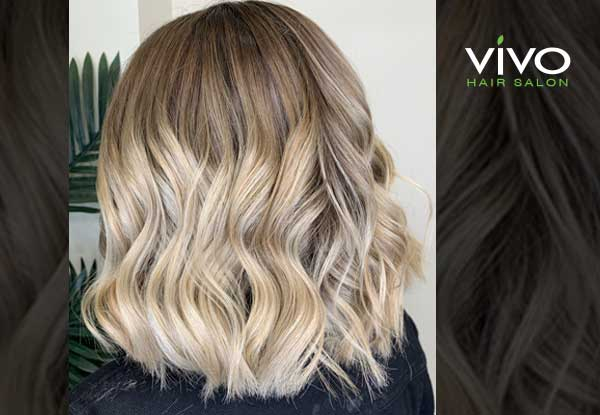 Premium Hair Colouring, Styling & Maintenance Packages from Award Winning Salon VIVO - Option for All-Over Colour, Half Head, Full Head of Foils, or Range of Balayage Packages