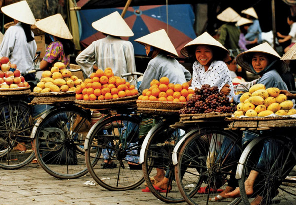 Per-Person, Twin-Share Seven-Day North Vietnam Tour incl. Guides, Meals as Indicated, Transfers, & More