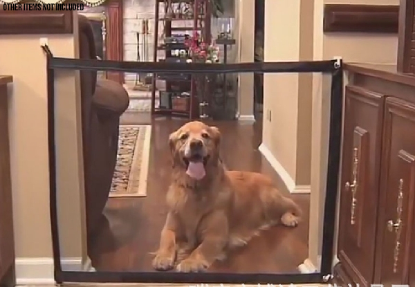 Home Pet Mesh Isolation Net - Option for Two