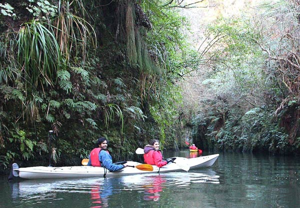 Three-Hour Glow Worm Adventure Kayak Trip - Option for Adult or Child