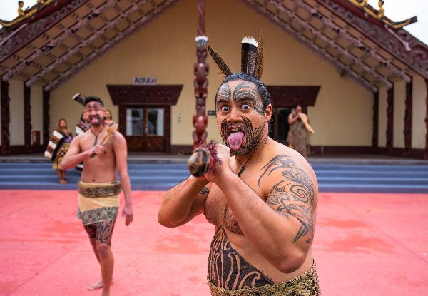 Ngā Hau e Whā Mārae Experience - Options for Student or Child or to incl. Kapa Haka with Hākari Feast or Kaimoana Available