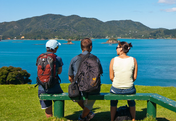 Return Ferry Trip to Otehei Bay in the Spectacular Bay of Islands - Options for Adults, Children & Families