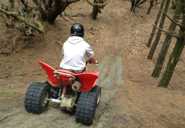 90-Minute 'Trail Blazer Safari' Quad Bike Adventure for One - Options for up to Six People