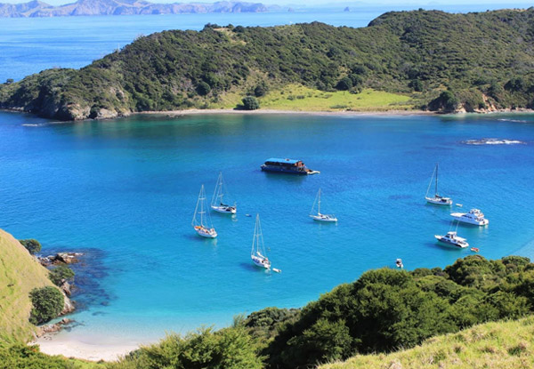 Overnight Cruise in the Bay of Islands incl. Accommodation, All Meals, Activities & Island Stopover - Options for Shared Rooms, Family Rooms, Private Rooms or Private Charter Available