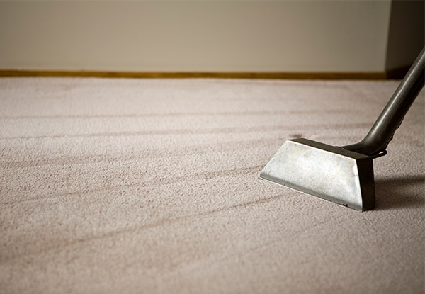 Carpet or Upholstery Shampoo - Options for up to a Five-Bedroom House or Six-Seater Suites