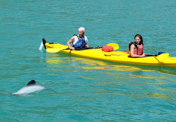 One Hour of  Wildlife Kayaking for Two People - Option for Two Hours