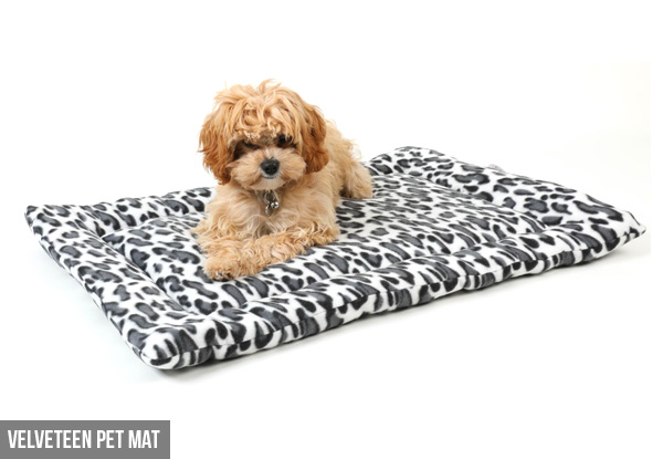 Pet Bed - Two Styles Available with Free Delivery