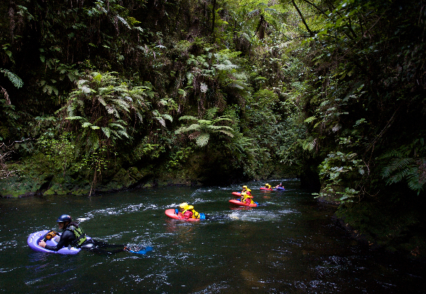 White Water Sledging Trip Down the Kaituna River incl. Adventure Photo Pack & Shuttle Transfers Pick-Up & Drop-Off - Options for up to Six People
