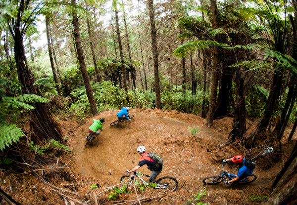 Per-Person 16 Day Epic NZ Dreamer MTB Tour – North & South Island incl. Accomodation, Guides, Activities & More