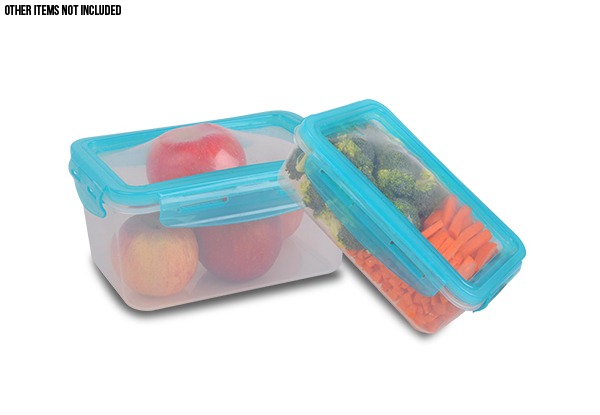 Set of Two Flexible Lid Storage Containers