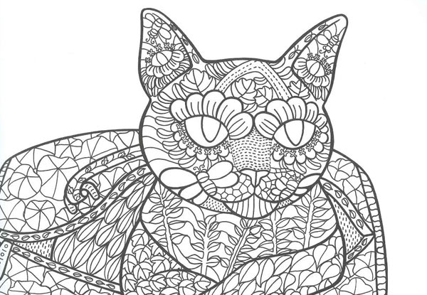 1699 For The Day Of Cat Colouring Book