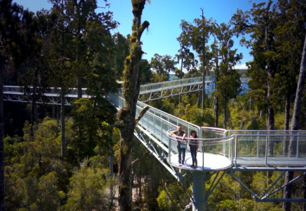 Adult Pass to The West Coast Treetop Walk Way - Option for Child Pass Available