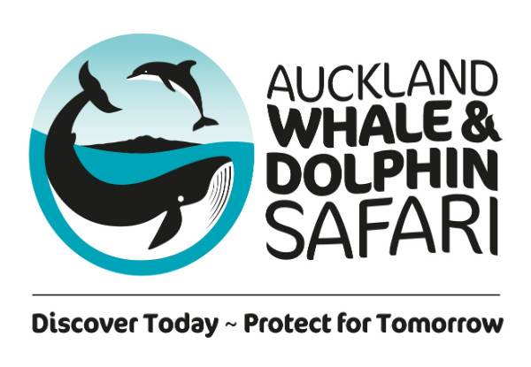 Auckland Whale & Dolphin Safari Midweek Adult Ticket - Options for Child & Weekend Tickets Available