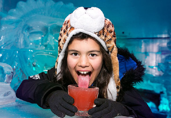 One Adult Ice Bar Entry incl. a Cocktail or Mocktail - Option for Two Adults & Family Entry