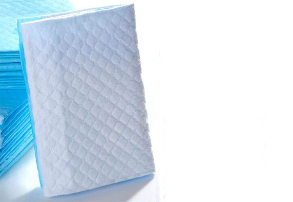 Ultra Absorbent Puppy Training Pads - Four Sizes Available