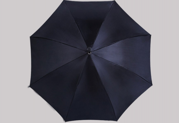 Two-in-One Umbrella with Walking Stick Handle with Free Delivery