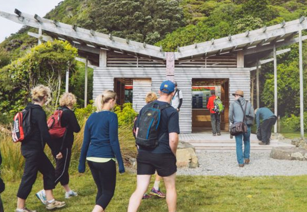 Kapiti Island Day Trip incl. Ferry Transport, Introductory Talk & DOC Permit for One Person - Option to incl. One-Hour Guided Walk, Buffet Lunch & Drinks - Midweek and Weekend Options Available