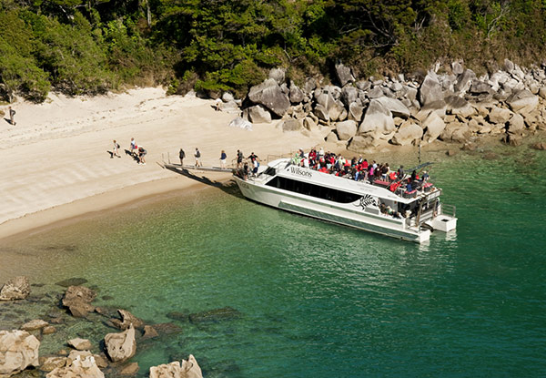 Abel Tasman Vista 'Great Day Out' Cruise & Walk - Option for a Child