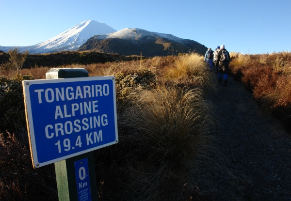 Two-Night Tongariro Alpine Crossing Accommodation Package for One Person incl. Transfers, Breakfast & Dinner - Options for up to Four People
