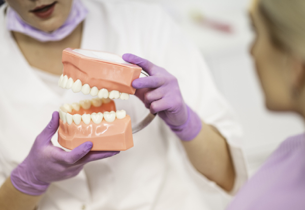 Dental Check-Up Package incl. Examination, X-Rays, Scale & Polish