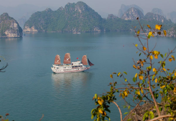 Per-Person Twin-Share 10-Day Vietnam Motorbike Tour incl. Motorbike, Helmet & Gear, English Speaking Guide, Sightseeing, Airport Transfer & Overnight Cruise at Halong Bay - Option for Solo Traveler
