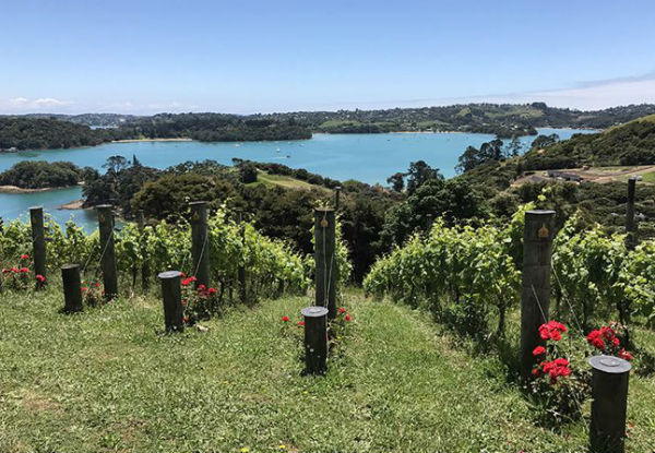 Return Ferry Trip from Wynyard Wharf to Waiheke incl. One Car & Two Adults - Option for Car & Four Adults