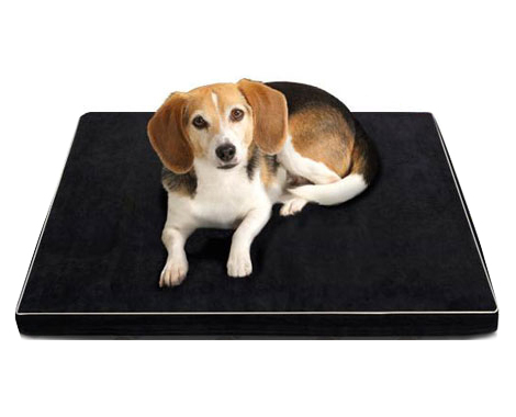 Memory Foam Pet Bed - Two Sizes Available
