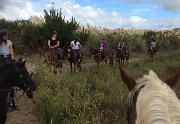 One-Hour Beach Horse Trek for One Adult - Options Available for a Child & Two-Hour Intermediate Trek